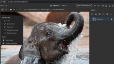Adobe brings Photoshop and Illustrator to the web